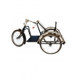 Handicapped Child Tricycle