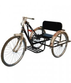 Handicapped Tricycle